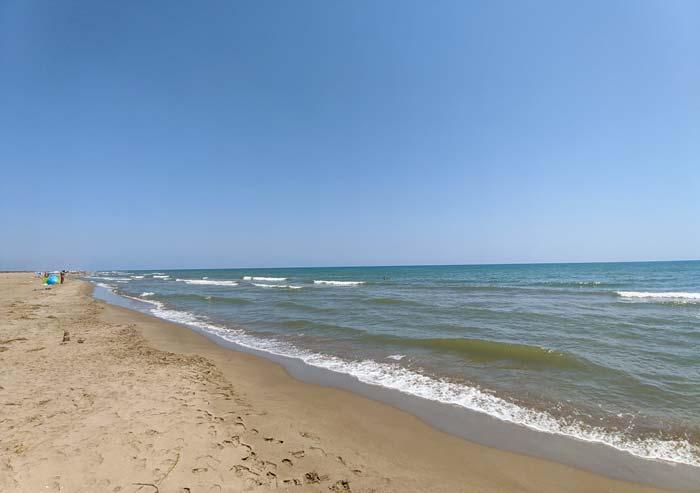 Playa de Eucaliptos, en Delta del Ebro