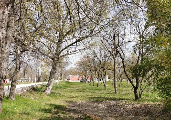 Parque en El Cortijo de San Isidro