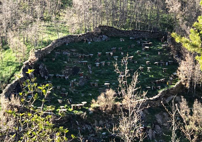 Antiguo colmenar de La Hiruela