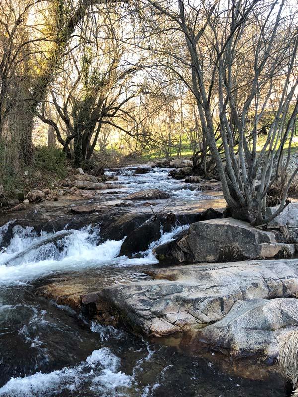Naturaleza en Manzanares el Real