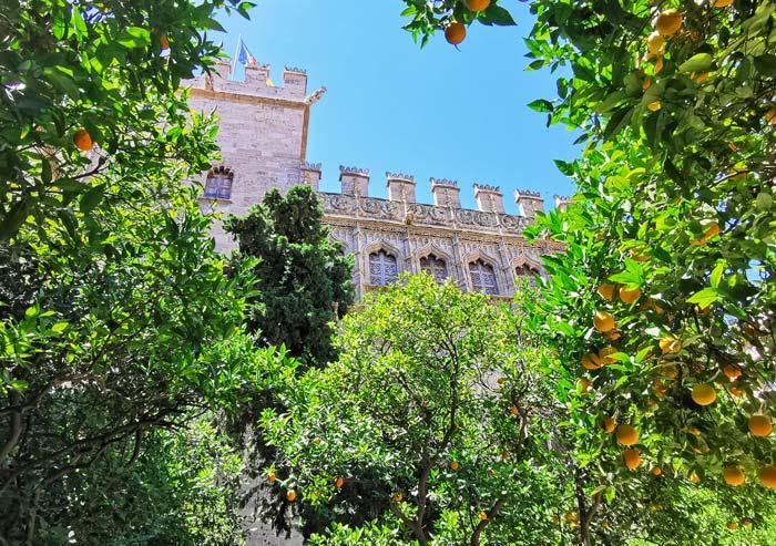Jardines de la Lonja de la Seda, Valencia